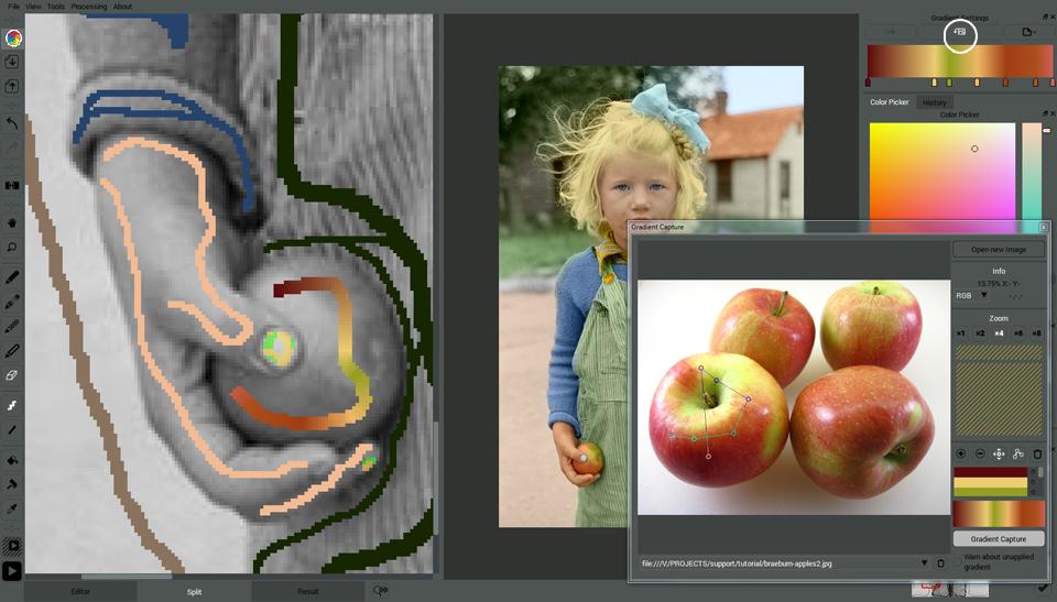 Project Capture Apple