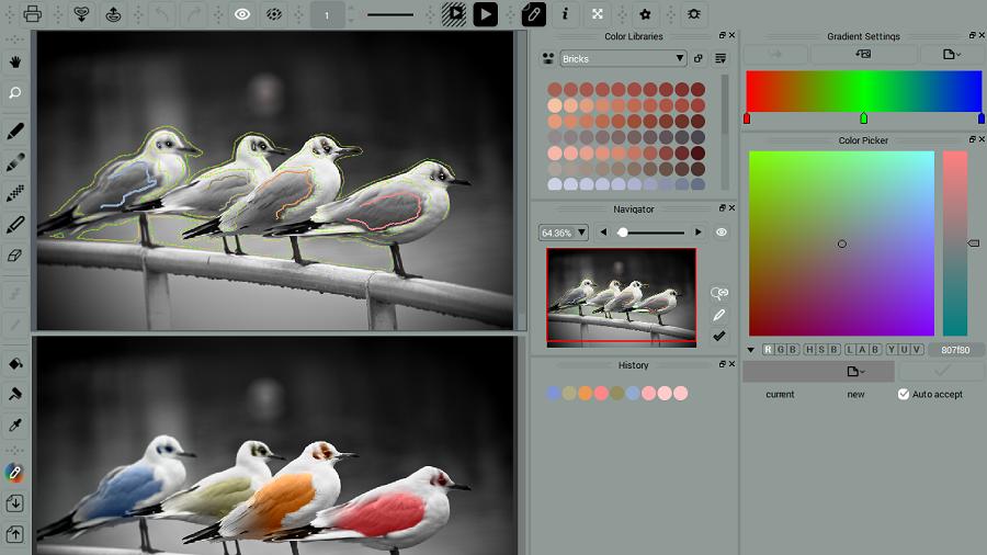 Project Birds